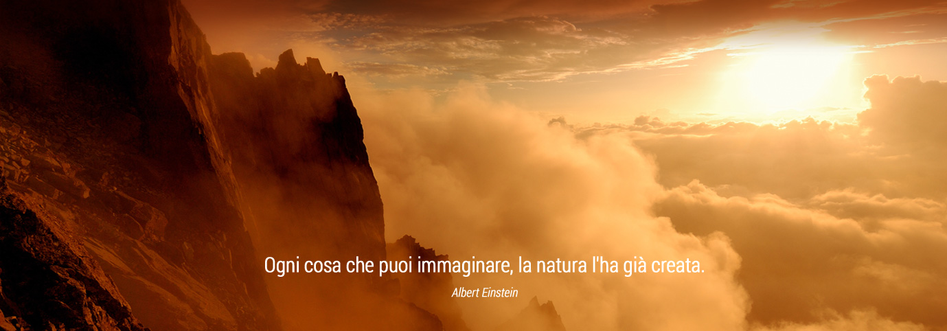 Ogni cosa che puoi immaginare, la natura l'ha già creata. Albert Einstein
