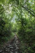 Antico sentiero di Durano