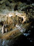 """Grotte di Toirano: un salto """"nel buio"""" durante la preistoria"""