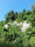 Rocca pliocenica