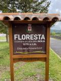 #VisitFloresta