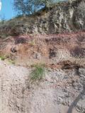 Monte Calvarina: orizzonte rubefatto sotto colata basaltica