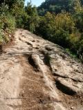 Prospettiva da Ovest del sentiero umano fossile più antico del mondo