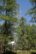"Torre ""Eddy Covariance"" nel Lariceto di Tronchaney, Torgnon, 2100 m slm"