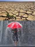 Le variazioni climatiche dalle glaciazioni all'incremento dell'effetto serra: quali scenari futuri?