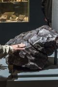 La più grande meteorite in un museo italiano
